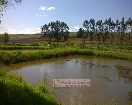 Sítio 6 alqueires,  Bela Vista do Paraíso Paulo Cancian Imóveis - Veja Casas
